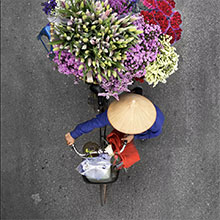 flower bicycles photo 2
